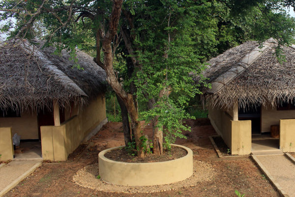Typical eco lodge in nature of Kibissa