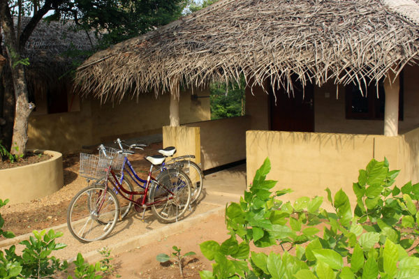 Typical eco lodge with bike in Sri Lanka